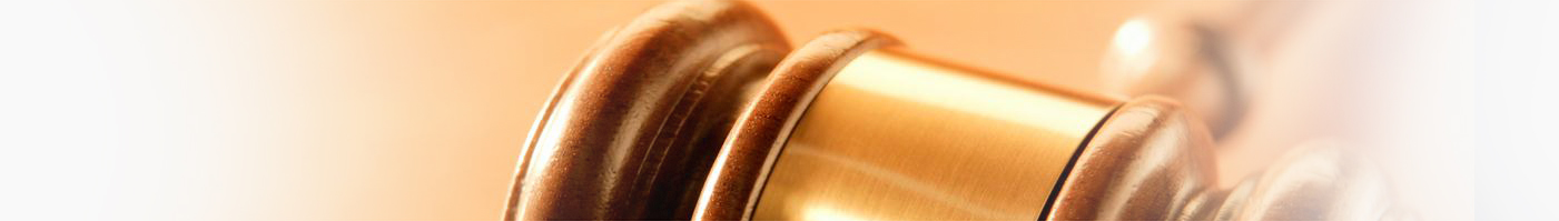 Judicial Conduct Guidelines with commentaries revised 21 August 2014